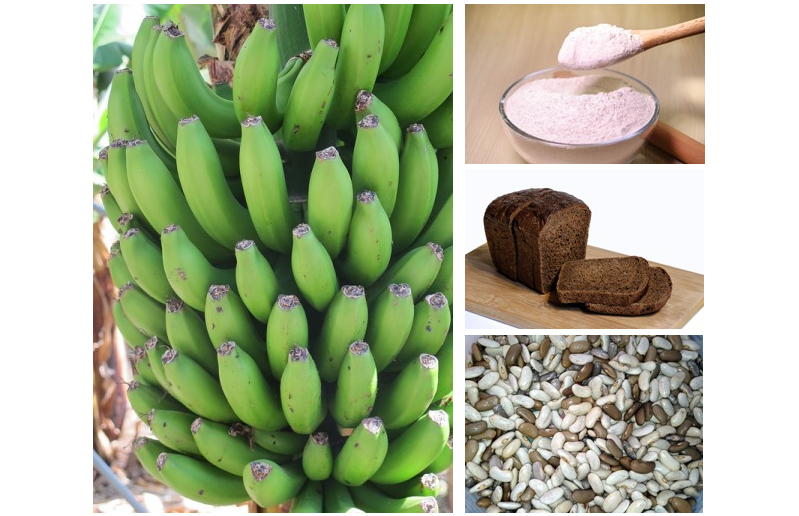 about resistant starch